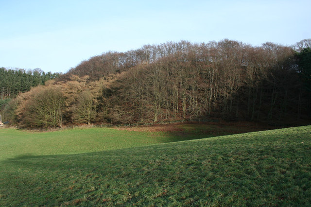 Mixed woodland on Burwardsley Hill