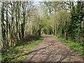 TQ1675 : Thames Path by Paul Gillett