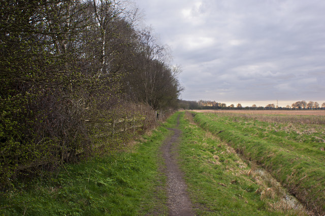 The footpath runs parallel to the railway line
