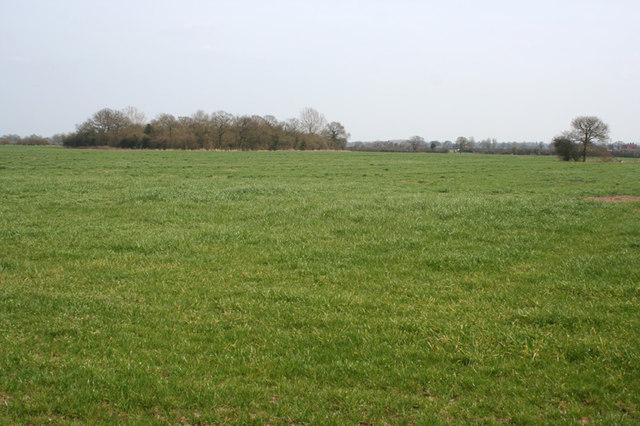 View towards Broomhall Wood