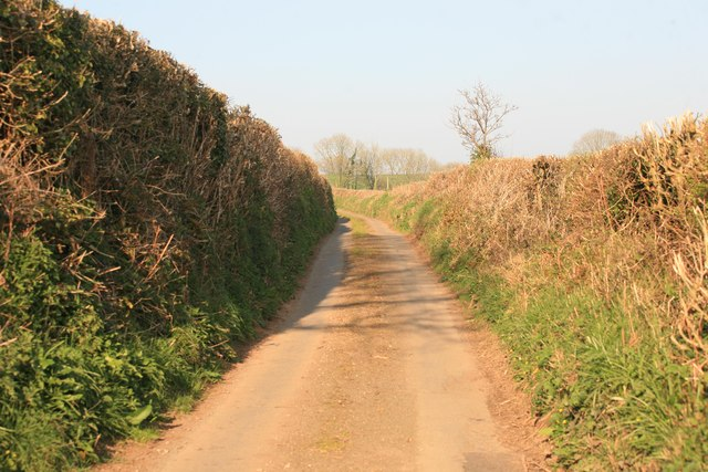 Cornish narrow lane