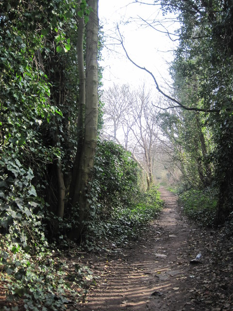 Carr Lane