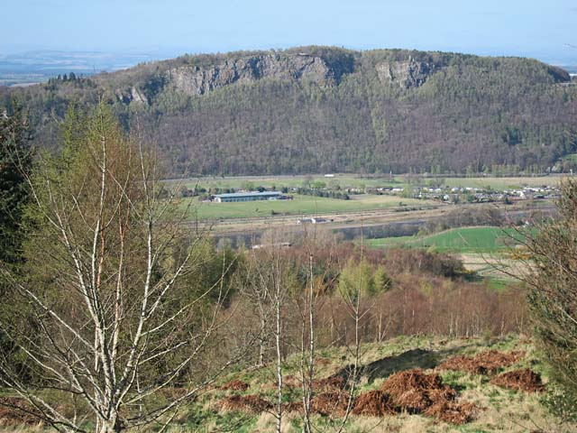 Kinnoull Hill cliffs