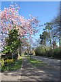 SO9874 : Old Birmingham Road 1 April 2012 by Roy Hughes