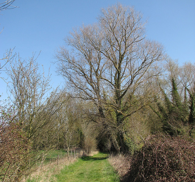 Near Harston in early spring