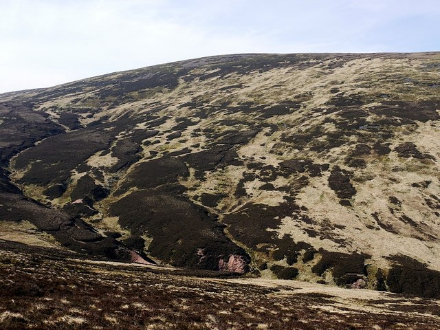 Harthope Burn from the slopes of Comb Fell