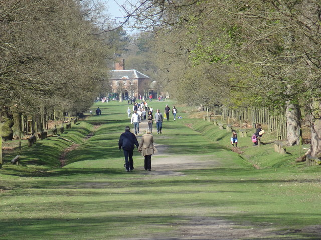 Avenue through parkland at Dunham Massey
