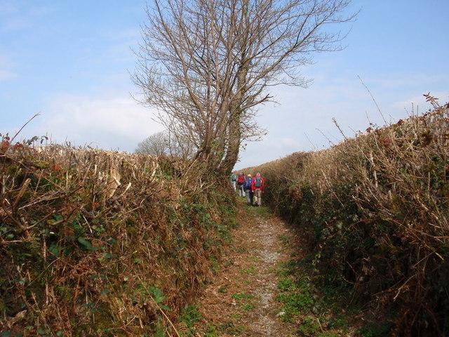 Llwybr ceffyl Llannewydd - Newchurch bridleway