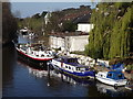 SU9081 : Boats Moored Above Maidenhead Bridge by Colin Smith