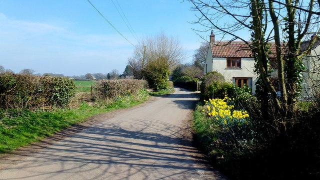 Dyers Lane
