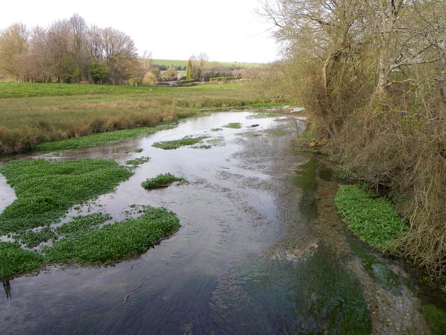 River Ebble, Broad Chalke - (5)