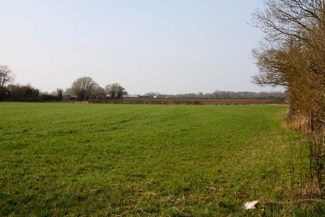 Field near Ock Bridge