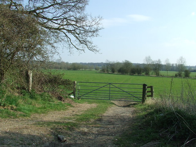 Gate and meadow