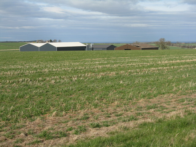 Farm buildings near Whittingehame Mains