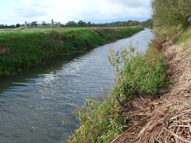 River Brue at Tootle Bridge Farm