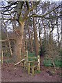 SJ8167 : Stile into wood north of Clonterbrook Farm by Richard Dorrell