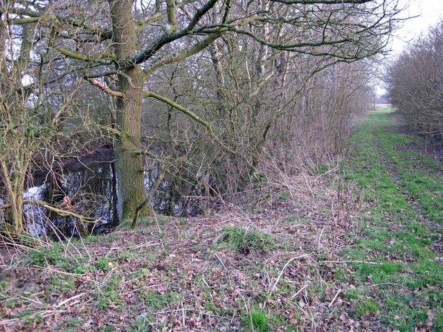 Footpath to Wornish Nook