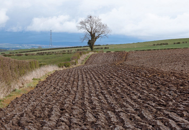 Ploughed field near Hirst