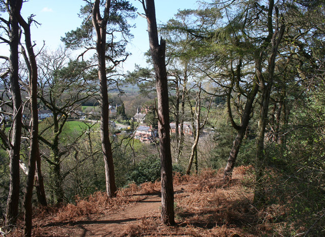 View towards Burwardsley from Willow Hill