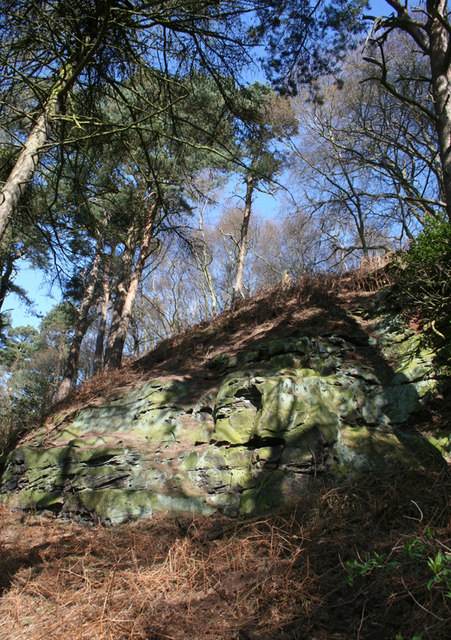 Sandstone outcrop on Willow Hill