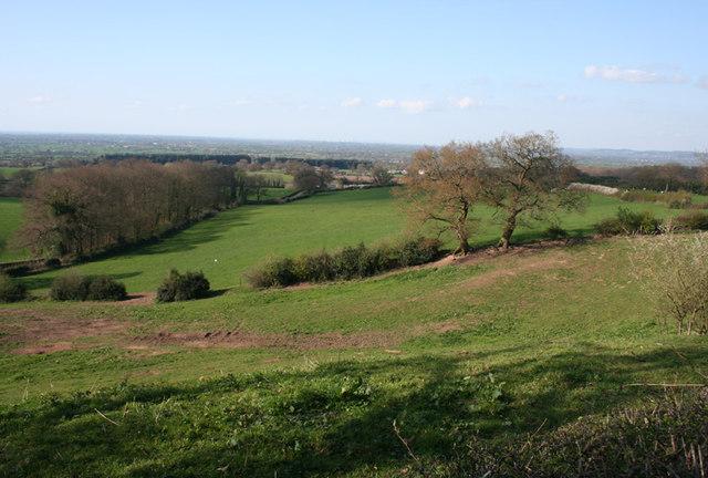 Sloping pasture in Burwardsley