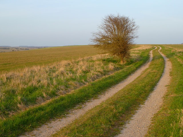 Track and farmland, Enford