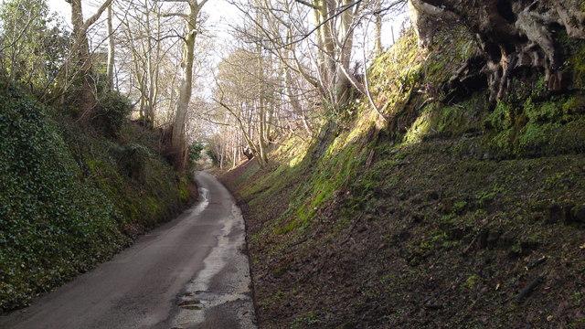 Ancient hollow way at Aston