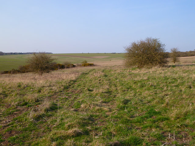 Downland, Enford