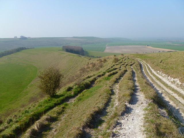 Downland, Milton Lilbourne