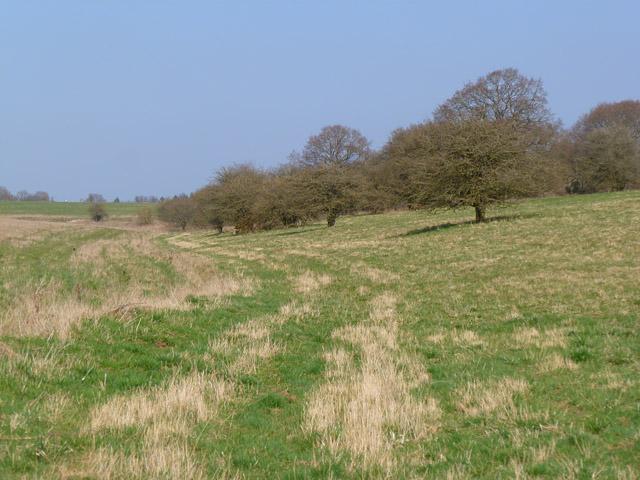 Downland, Everleigh
