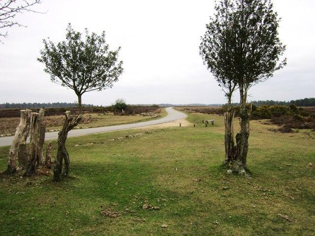 Ocknell Plain