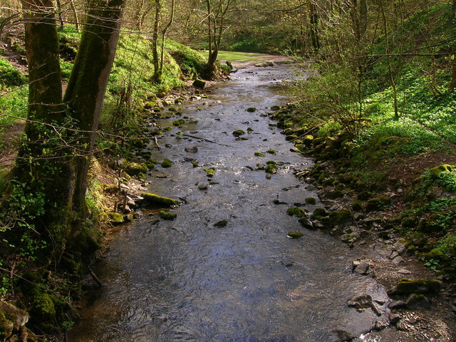 River Alyn - Loggerheads Country Park