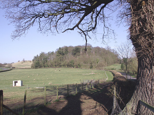 Pasture north-east of Roughton, Shropshire