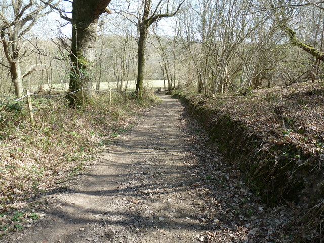 Bridleway through Oxen's Wood