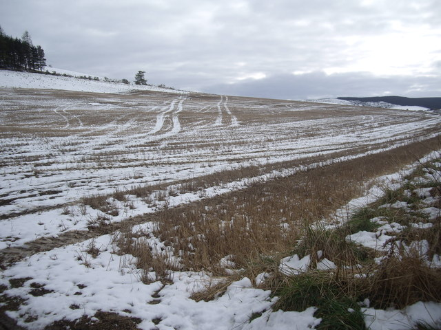 Wheel tracks in a field near Gallow Hill