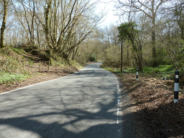 Newick Lane passing through Great Furnace Wood
