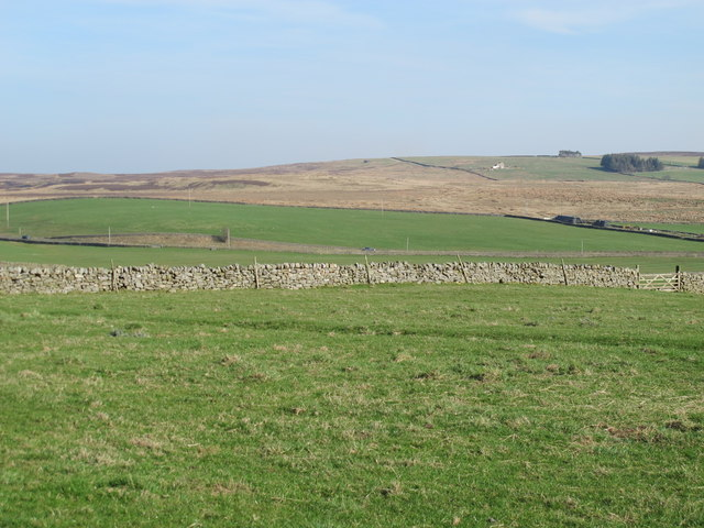 Pastures north of Round Meadows Farm