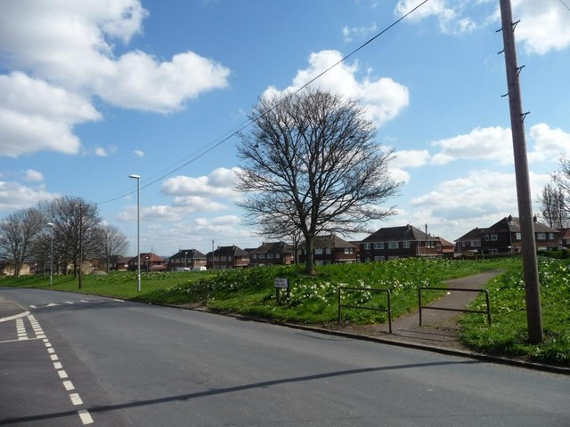 Spring on the ring road, Belle Isle