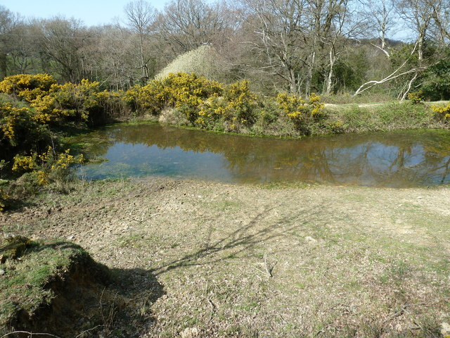 Pond by footpath HW 20 near Hill Farm