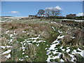 SE0022 : Footpath from Littlewood to Priestley Ing, Cragg Vale by Humphrey Bolton