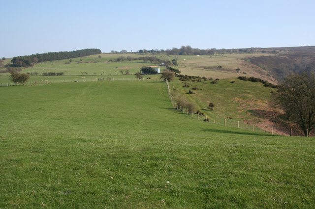Pasture-moorland boundary on Resting Hill