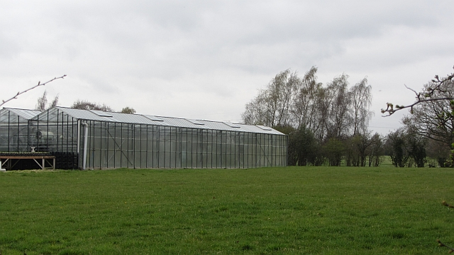 Glasshouse, Tableybrook