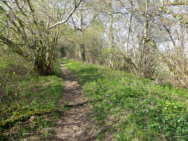 Bridleway near Reddish Gore