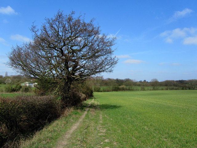 Field near Cossall Marsh