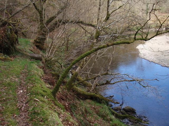 Afon Cothi, Brechfa