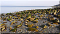 NR8744 : Boulders on beach at Pirnmill by Trevor Littlewood