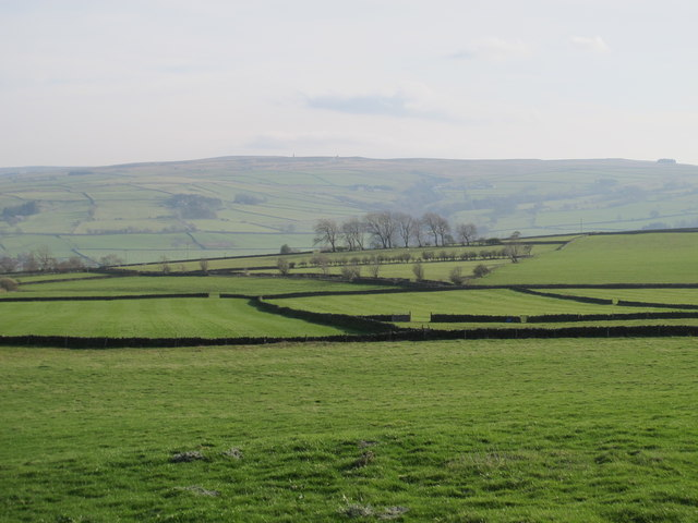 Pastures east of Old Town