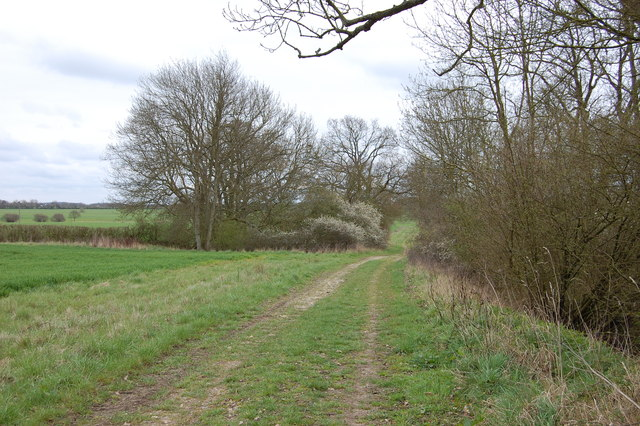 Track beside Ash Grove