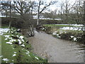 SE6796 : River  Dove  rising  with  Snow  Melt by Martin Dawes