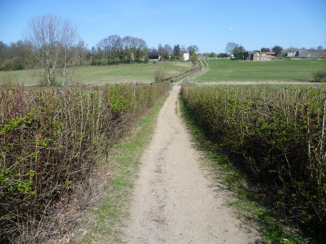 Path on the Hawkwood Estate
